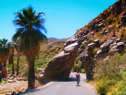 Road to Indian Canyons at Aguas Calientes Palm Springs 1