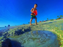 Taylor Family at Beach in Tarpon Springs Florida 6