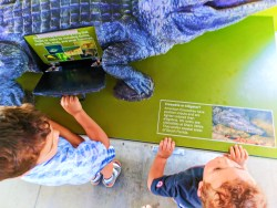 Taylor Family with Alligator exhibit Everglades NPS Shark Valley Visitors Center 1