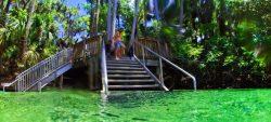 Taylor Family swimming at Blue Spring State Park Daytona Beach 1