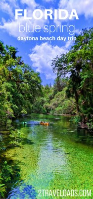 With the greatest congregation of manatees in Florida, Blue Spring State Park is perfect for a family vacation. Full of camping, swimming and photography, it's unlike any place else. In winter months more than 400 manatees will migrate here for the warm water. 2traveldads.com