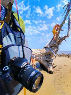 Canon Rebel at Driftwood Beach Jekyll Island Golden Isles 6
