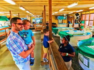 Taylor Family at Sea Turtle ICU at Georgia Sea Turtle Center Jekyll Island Golden Isles Georgia 7