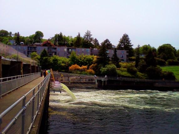Ballard Locks Seattle 1