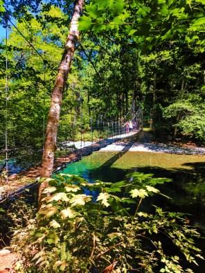 Suspension Bridge in Grove of the Patriarchs Mt Rainier National Park 2