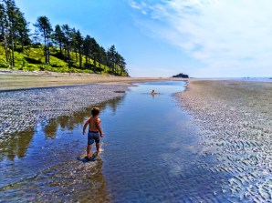 Taylor Family and Sandbar at Ruby Beach Olympic National Park 2