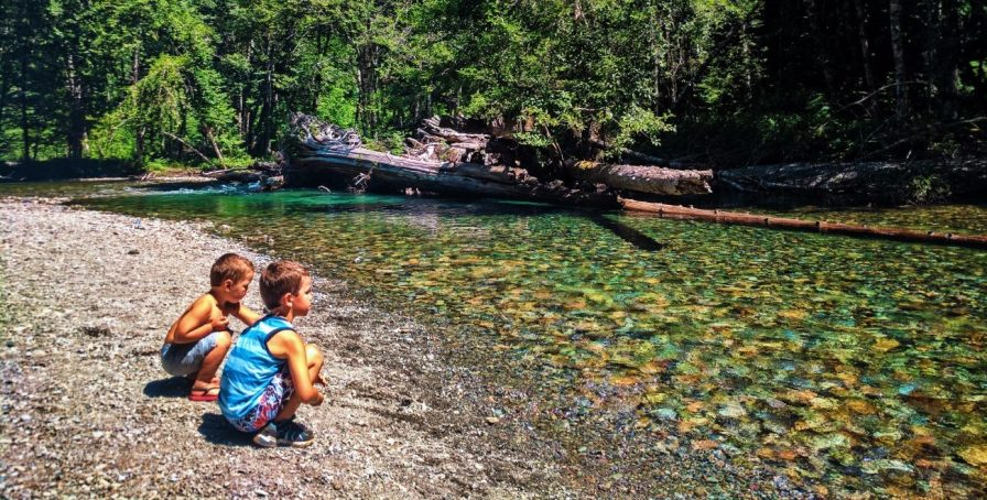 Taylor Family at Ohanapecosh River in Grove of the Patriarchs Mt Rainier National Park 3