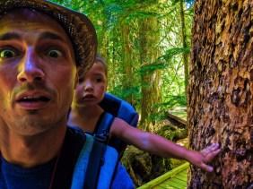 Taylor Family hiking Grove of the Patriarchs Mt Rainier National Park 15