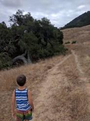 Taylor family Hiking Cerro San Luis Obispo 3