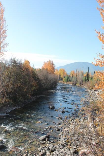 Bowman Creek Polebridge Glacier National Park