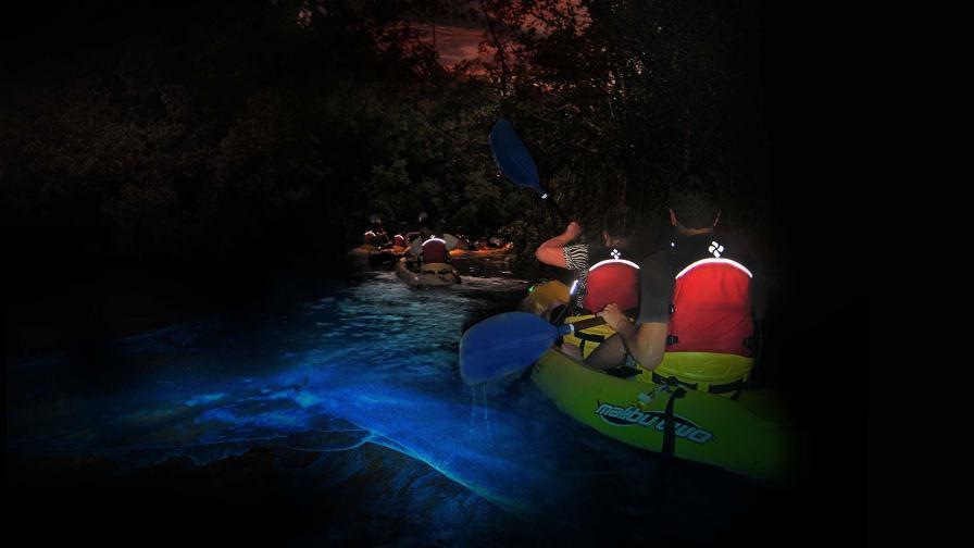 KayakingPuertoRico Bioluminescent kayaking 1