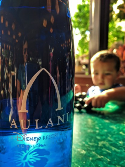 Water bottle and Taylor Family at Disney Aulani Oahu 1
