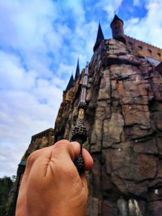 Wand at Wizarding World of Harry Potter Hogsmeade Islands of Adventure Universal Orlando 1