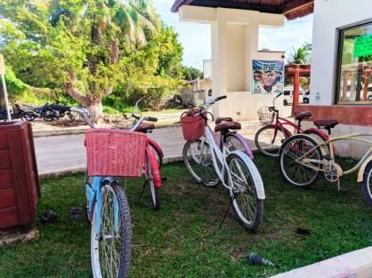 Bikes at entry to Coba Ruins Archaeological Park Yucatan road trip 1