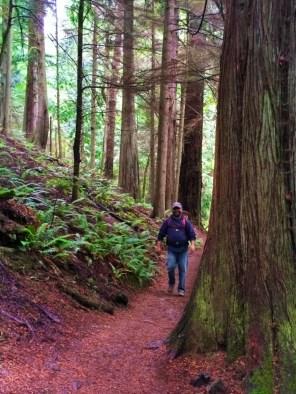 Wandering Daughter TB Waterfalls on Cascase Falls trail Moran State Park San Juans 2
