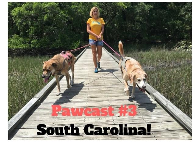 Pawcast #3South Carolina!