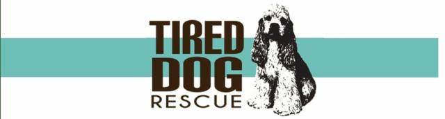 tired-dog-logo