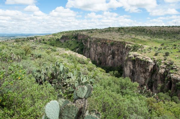 El Charco del Ingenio Botanical Garden and Nature Preserve