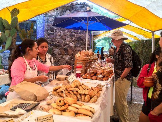 Shopping at the Saturday Farmer's Market in San Miguel de Allende