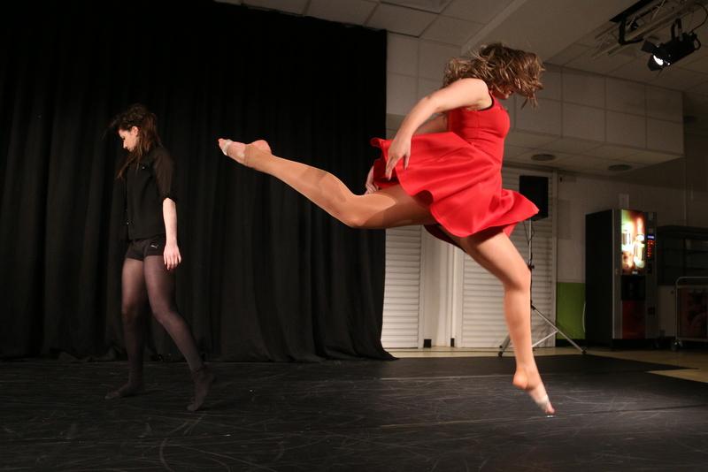 Neatherd dance show sample (9)