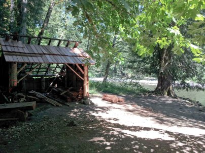 Along the Lewis river trail.