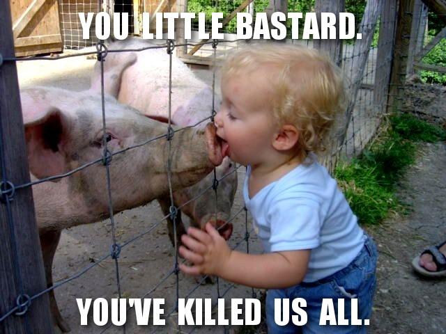 Source of swine flu discovered