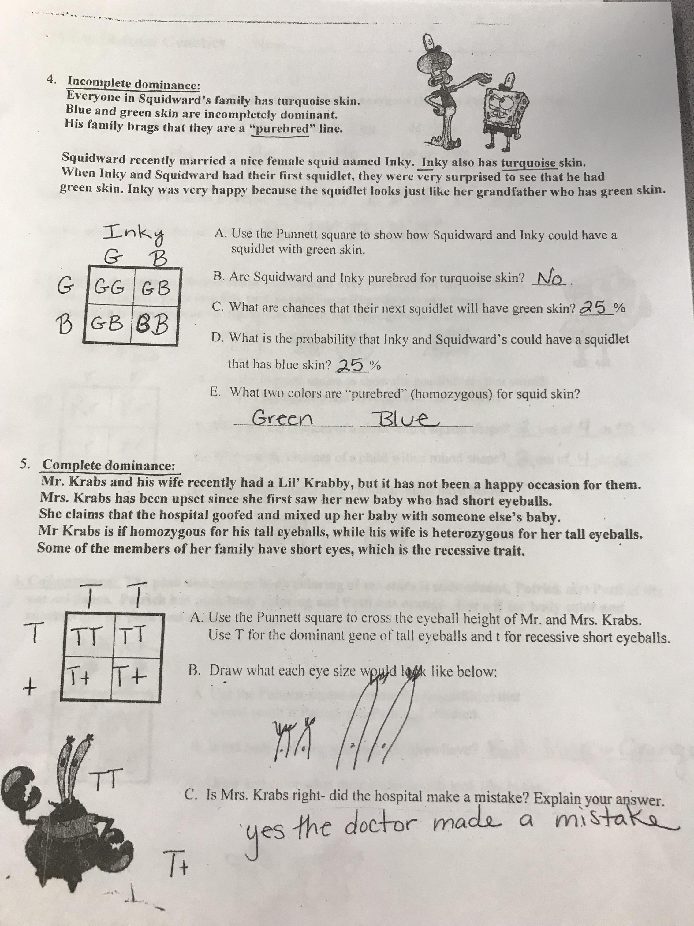 Drawing Sea Breeze And Land Breeze Worksheet