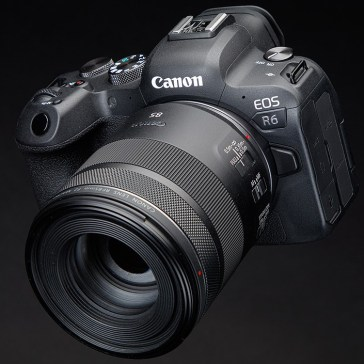 Canon brings C-Log 3, dual-card recording to R6 and 1D X Mark III cameras via firmware updates