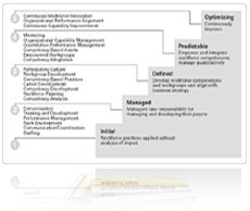 People Capability Maturity Model - Bing images
