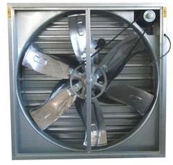 poultry shed ventilation fan