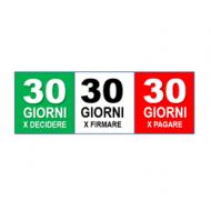 Manifesto 30-30-30
