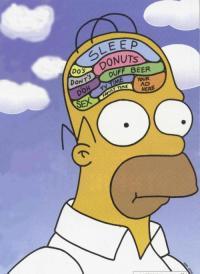 Homers Head