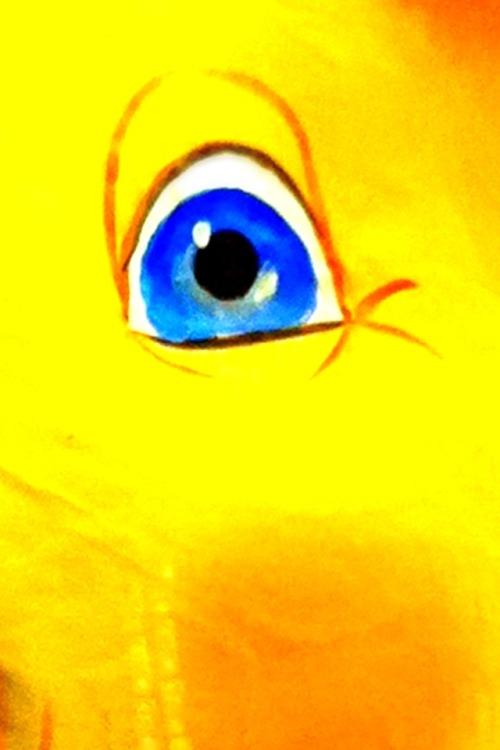 Pigs eye.