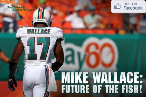 Mike Wallace Miami Dophin