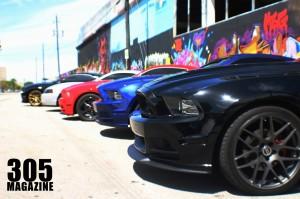 Mustang.Wynwood15