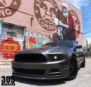 Mustang.Wynwood7