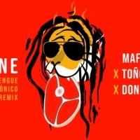 Maffio, Toño Rosario, Don Miguelo - Carne (Merengue Electrónico Remix - Audio)