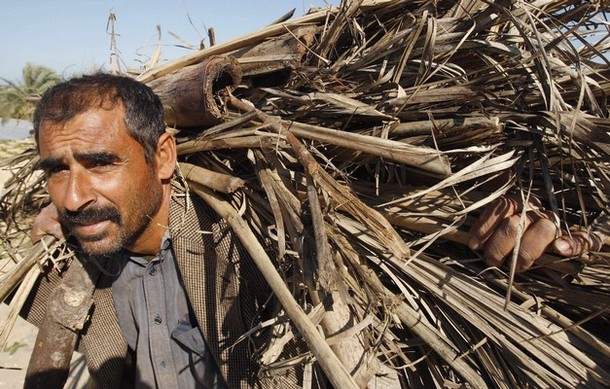 Palestinian citizen brings home wood that it ran out of gas because of the Israeli blockade of Gaza.
