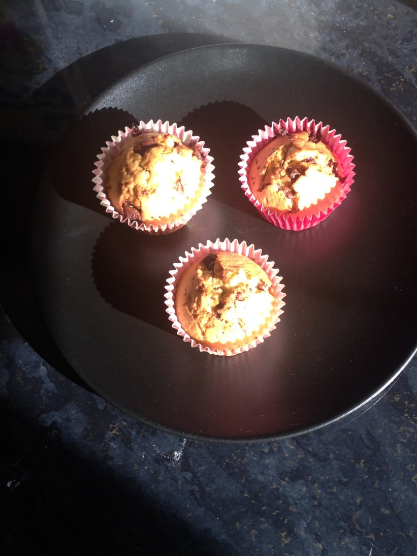 Day 9 - Choc Chip Cupcakes2