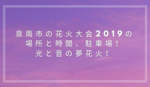 泉南市の花火大会2019の場所と時間、駐車場!光と音の夢花火!