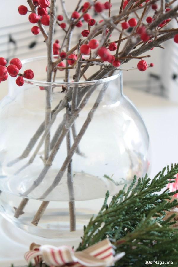 Christmas evergreen