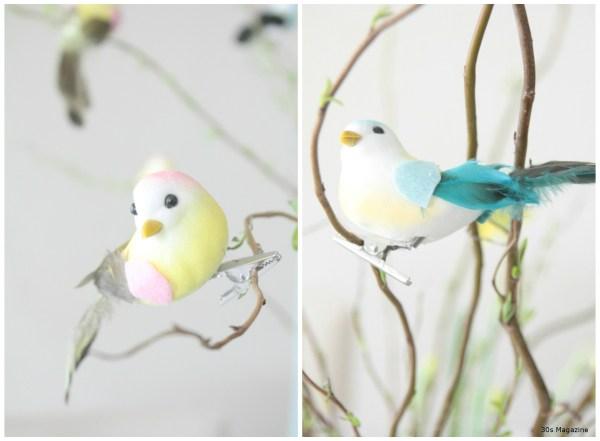 clipping birds