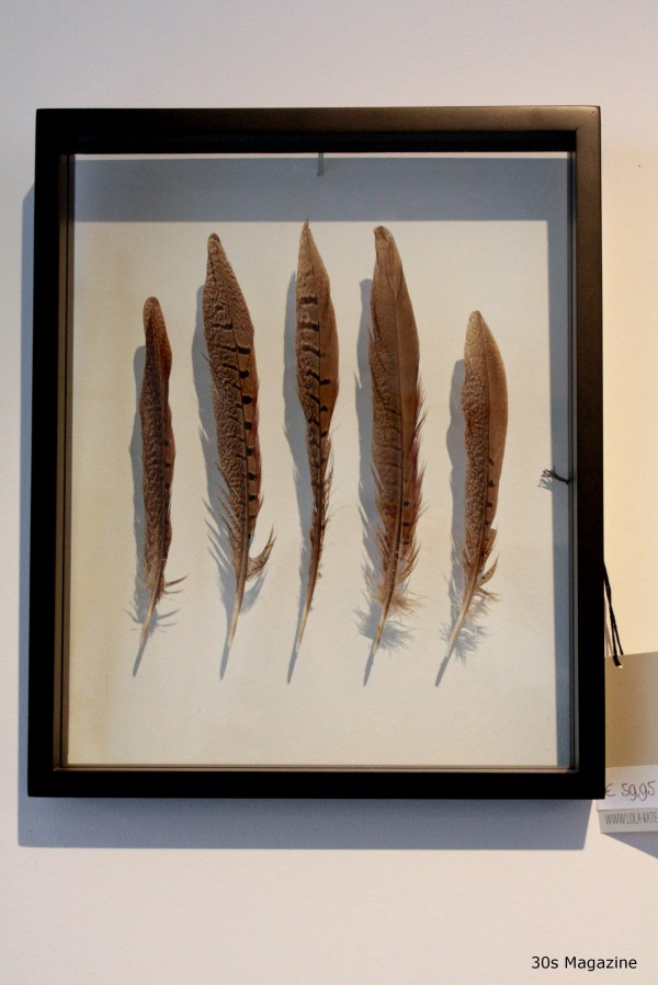 framed feathers by Lola-Kate