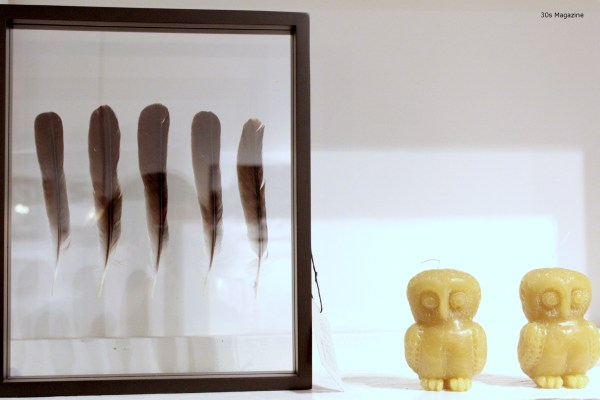 Framed feathers