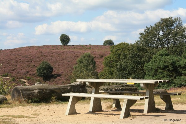 bench in heatherfield