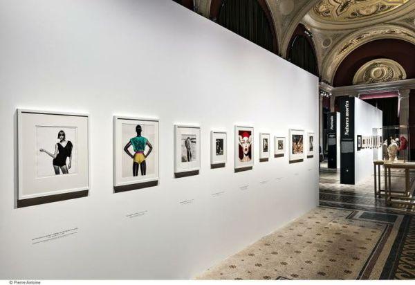 Paris exhibit 6