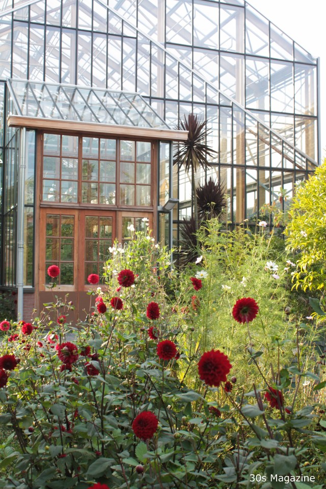 The Botanical Garden in Leiden
