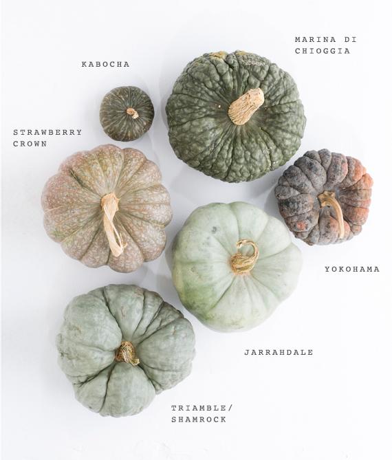 green-heirloom-pumpkins-fall-decor-1