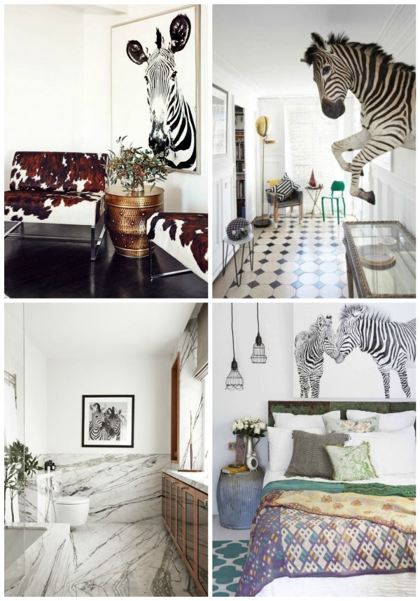 zebra on the wall