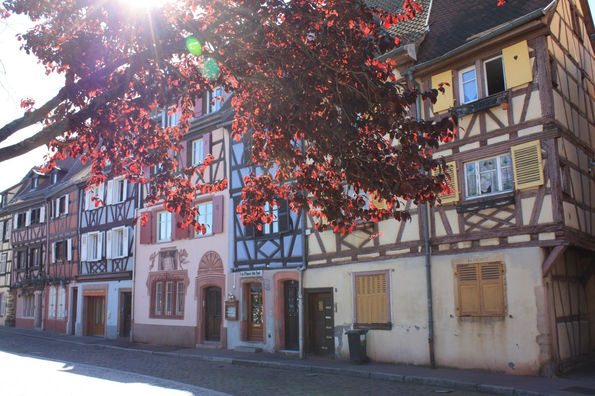 Top 4 things to do in Colmar, France